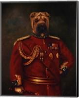 Framed Major-General Woof