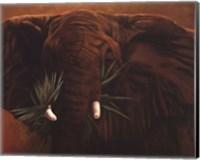 Framed Elephant Grande