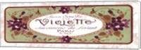 Framed Violette
