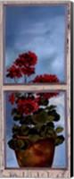 Framed Antique Window I