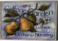 Framed Cottage Garden II