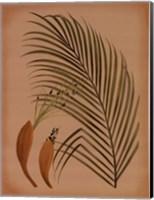 Framed Palm Frond IV