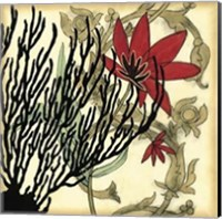 Framed Coral Tapestry IV