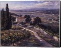 Framed El Valle
