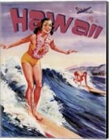 Framed Fly to Hawaii