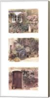 Framed Flowers of Provence