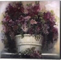 Framed Lilac Gathering