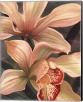 Framed Orchids I