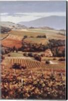 Framed Golden Vineyard I