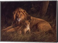 Framed Lion And Cub