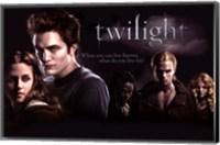 Framed Twilight - Group 2