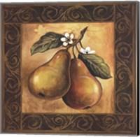 Framed Pear Orchard