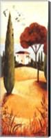 Framed Montecastello II