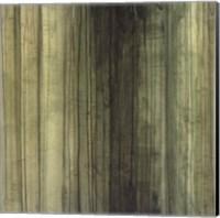 Framed Shades of Sage