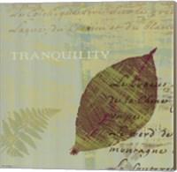 Framed Tranquility