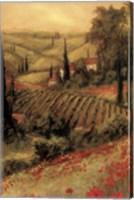 Framed Toscano Valley II
