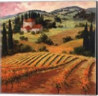 Framed Dawn of a Tuscan Vineyard