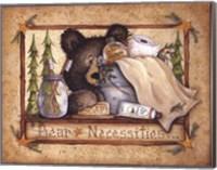 Framed Bear Necessities