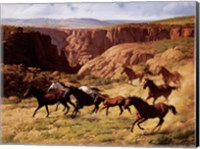 Framed Canyon Mustangs