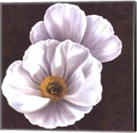 Framed White Poppies II - mini