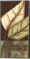 Framed Small Palm Leaf Arabesque II (P)
