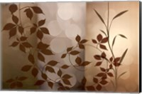 Framed After All