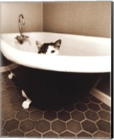 Framed Kitty III