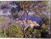 Framed Bordighera, 1884