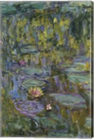 Framed Waterlilies (dark green)