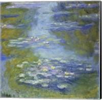 Framed Waterlilies, 1907 detail
