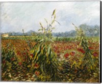 Framed Corn Fields and Poppies, 1888
