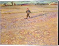 Framed Sower, 1888