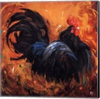 Framed Rooster #501