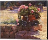 Framed Majorcan Patio Pot