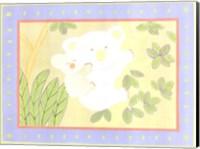 Framed Koala Bears