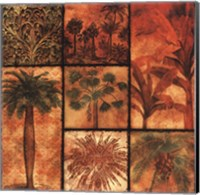 Framed Palm Patchwork II