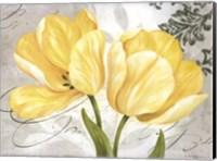 Framed Colori Yellow II