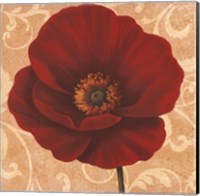 Framed Poppies II