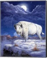 Framed White Buffalo