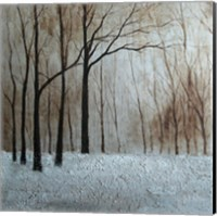 Framed Forest Landscape