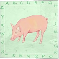 Framed Pig Alphabet