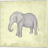 Framed Elephant Alphabet