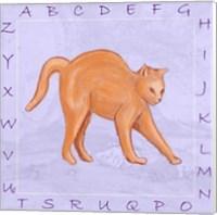 Framed Cat Alphabet