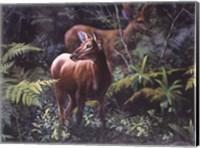 Framed Deer in Fall Forest