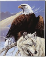 Framed Eagle and Wolf