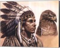 Framed Young Hawk