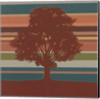 Framed Subtleties I