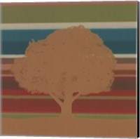 Framed Subtleties II