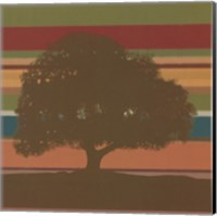 Framed Subtleties III