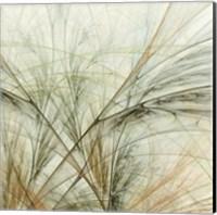 Framed Fractal Grass VI